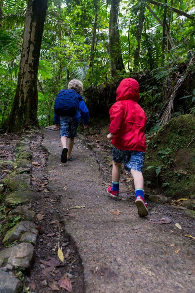 yunque-hiking-with-kids