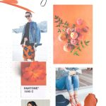 Orange Crush: 2017 Spring Color Trend