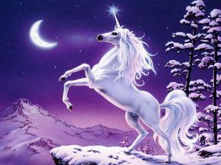 Unicorn-1846