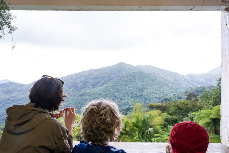 yunque-view