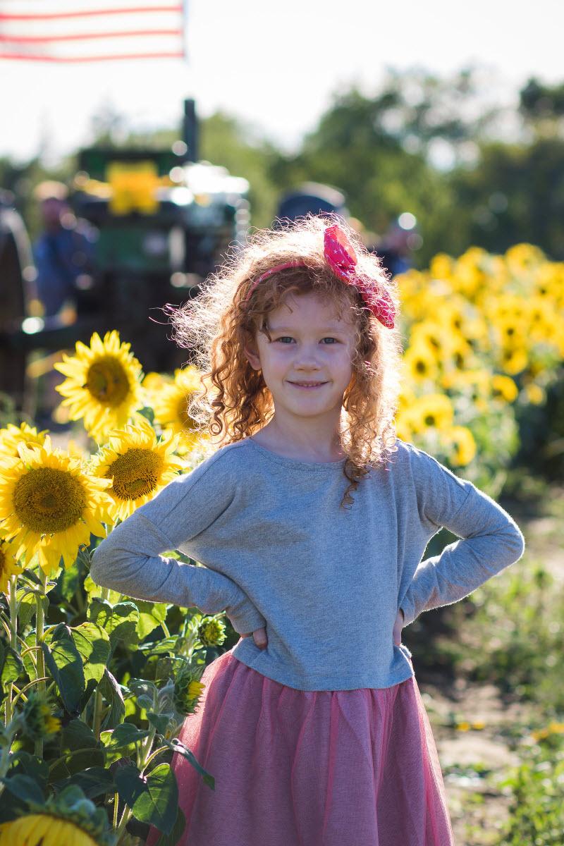 fall-sunflower-photos