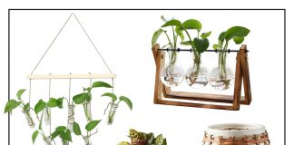 We need a li'l green indoors & easy houseplants = the answer. We're talking sunlight exposure, terrariums, greenhouses, snake plants...let the outdoors in!
