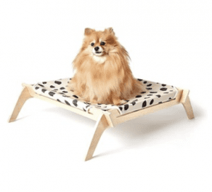 While shopping for a few toys & better bowls for our pups, 1 cute dog thing led to another... now I'm obsessed w/ modern dog design + all the dog treats!